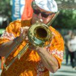 musician-4249480_1920